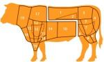 I tagli della carne bovina - The cuts of beef